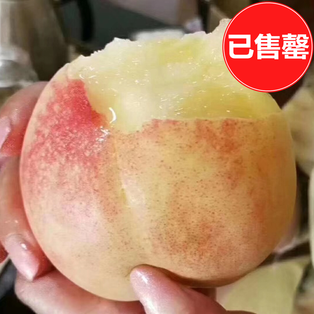无锡阳山水蜜桃(3两左右/只的湖景桃 12只装)